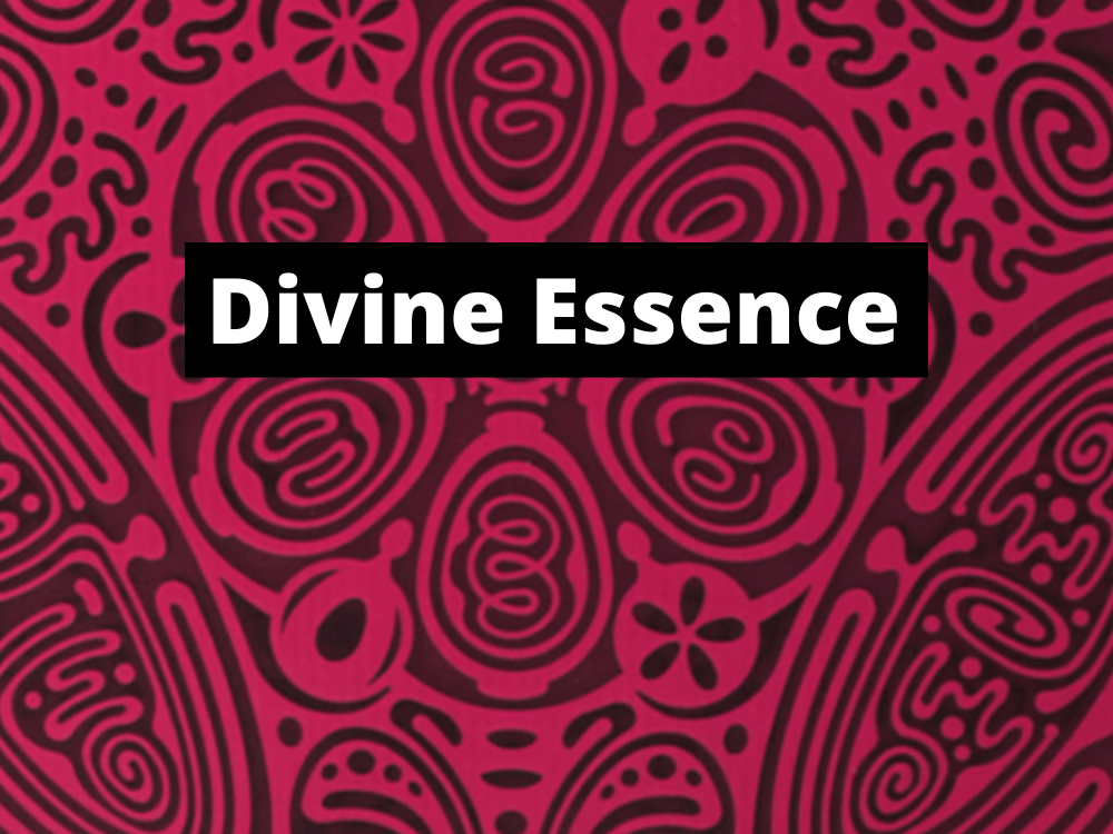 Powerforms Divine Essence Disks